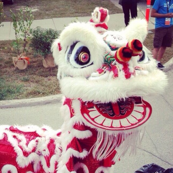 Contact Us Flying Lion Dance Troupe